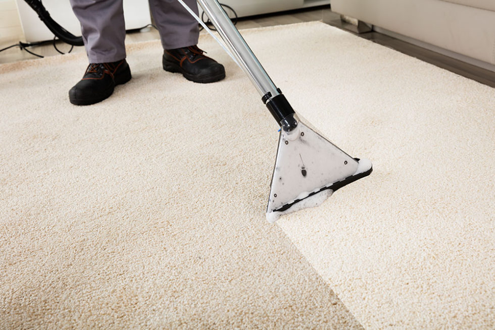 Carpet Cleaning Massachusetts